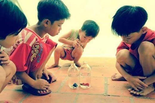 Hình ảnh gợi lên hồi ức tuyệt đẹp về tuổi thơ êm đềm của chúng ta