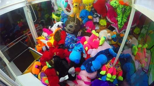 Chú gấu bông giả được trộn lẫn trong đám thú bông thật