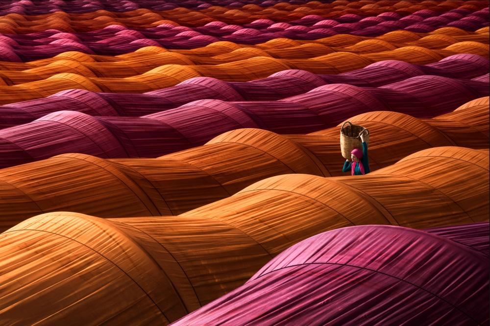 Trang trạidâu được phủ lên màu sắcrực rỡở Thổ Nhĩ Kỳ. (Ảnh: Internet)