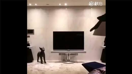 """Hết hồn với nội thất bên trong căn hộ """"đại gia"""" của G-Dragon"""