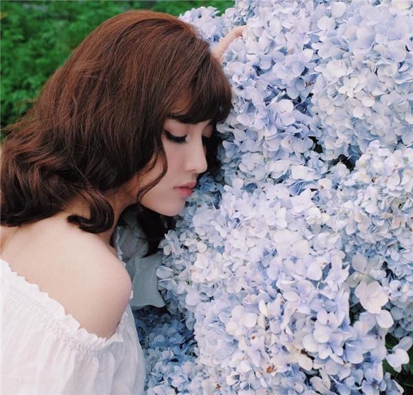 """Tạo dáng bên cẩm tú cầu, Bích Phương được các fan khen ngợi """"người đẹp hơn hoa"""". - Tin sao Viet - Tin tuc sao Viet - Scandal sao Viet - Tin tuc cua Sao - Tin cua Sao"""