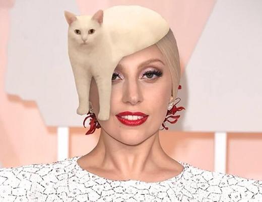 Làm mũ trùm đầu cho Lady Gaga cũng sang chảnhkhông kém! (Ảnh: Internet)