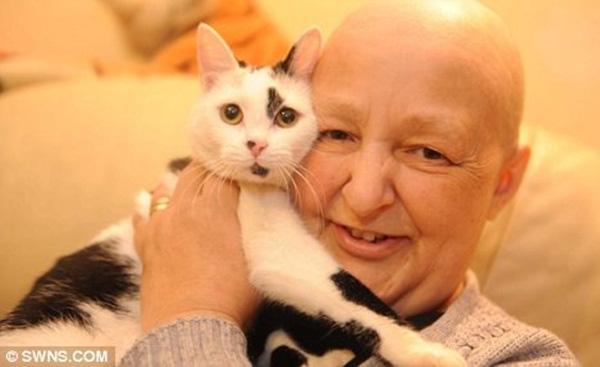 Những người may mắn thoát chết đến không thể tin nổi vì được mèo cứu