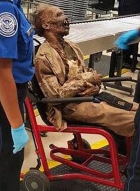 Vị hành khách đặc biệt khiến tất cả những người có mặt tại sân bay Atlanta... muốn xỉu. (Ảnh: Dailymail)