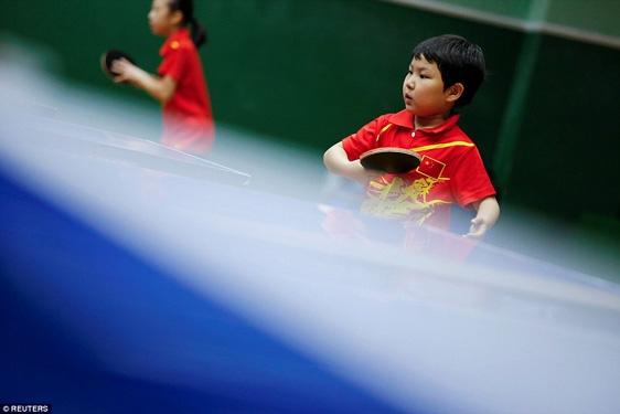 Trung Quốc là đất nước của những nhà vô địch bóng bàn, chính vì thế khát khao và kỳ vọng là điều không thể tránh khỏi đối với các em nhỏ này.
