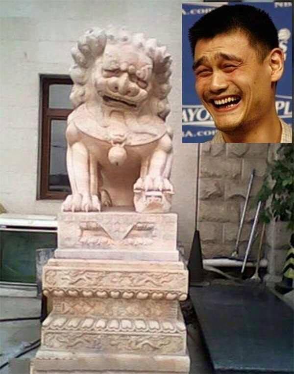 """Ai bảo sư tử không thể làm mặt """"troll"""" được chứ? (Ảnh: Internet)"""