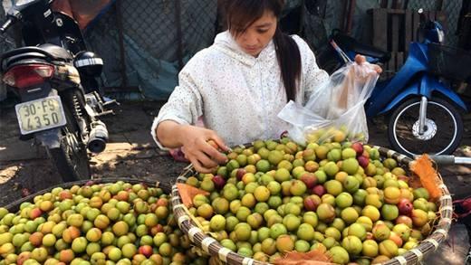 Cách phân biệt mận Việt Nam và mận Trung Quốc