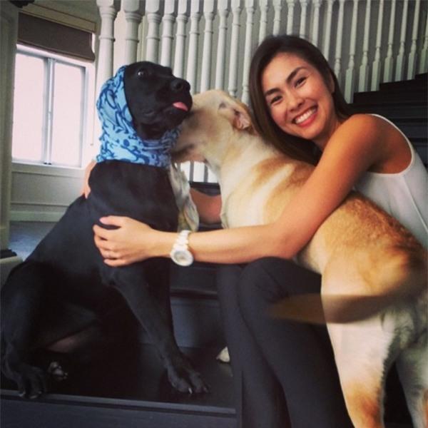 """Bức ảnh Hà Tăng đưa tay ôm hai chú chó đã gắn bó cùng cô rất lâu nhận được sự yêu thích của nhiều khán giả. Không ít người khen ngợi rằng vớihình ảnh này, """"ngọc nữ""""thể hiện được sự trân trọng, yêu thươngđối với ngay cả động vật. - Tin sao Viet - Tin tuc sao Viet - Scandal sao Viet - Tin tuc cua Sao - Tin cua Sao"""