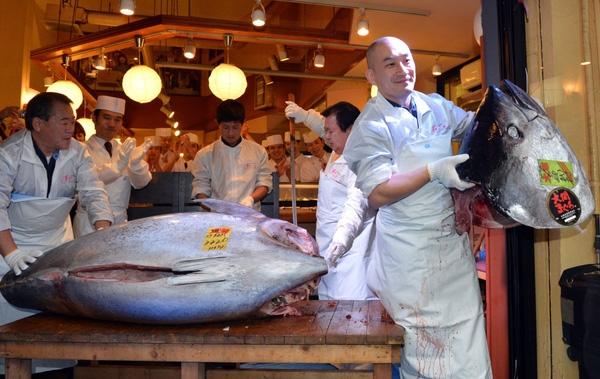 Chú cá nặng 221kg được đấu giá tới 1,76 triệu USD (khoảng 40 tỉ VNĐ)
