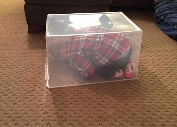 Phải chăng bé nghĩ đây là chiếc hộp thần kỳ, chui vào là tàng hình?