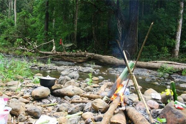 Tại đây bạn sẽ được đi khám phá các kiểu rừng, thả bè trên sông Cái, quan sát các loài động thực vật quý hiếm, tham quan di tích lịch sử trận địa đá Pi Năng Tắc, khám phá các hang động ven suối, tìm hiểu các sinh hoạt văn hóa truyền thống của hai cộng đồng Raglay và Churu.(Ảnh: Internet)