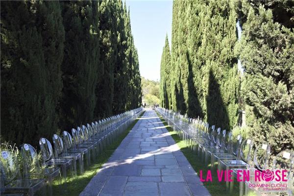 Câu chuyện về tình yêu, cuộc sống qua hình ảnh những đóa hoa hồng được Đỗ Mạnh Cường gửi gắm qua bộ sưu tập Xuân - Hè 2015. Sàn diễn là không gian thoáng đãng, nên thơ trên ngọn đồi của thành phố sang trọng Beverly Hills, Hoa Kỳ.