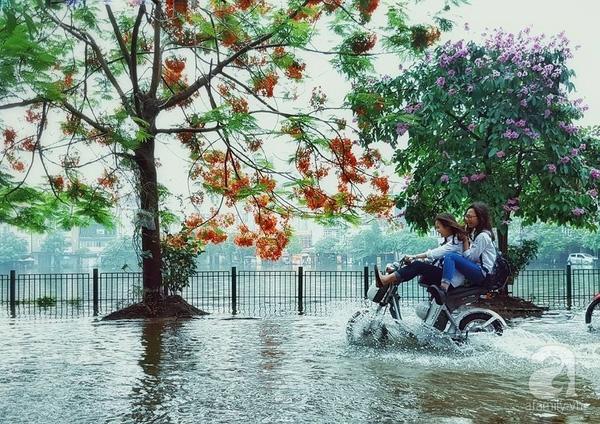 """Mở đầu là cảnh hai nữ sinh trên chiếc xe đạp điện xé tan dòng nước ngập trước mắt để đến trường. Nhìn cảnh tượng này, hẳn nhiều người sẽ nghĩ, hai cô học trò thật đẹp khi bên cạnh vừa có phượng, vừa có bằng lăng thật là """"chất"""". Ảnh: Nguyễn Anh Vũ."""