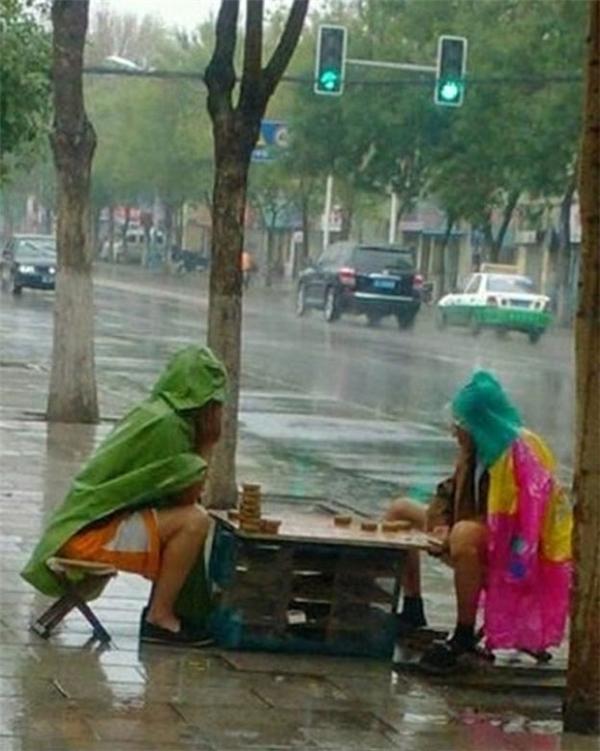 Có mưa có bão cũng không cản được ván cờ cân não nhất mọi thời đại.(Ảnh: Internet)