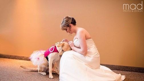Bức ảnh ý nghĩa được đăng lên mạng xã hội Reddit vào hôm 13/1, trong đám cưới của cô dâu Valerie Parrott, ở Sioux Falls, Nam Dakota.