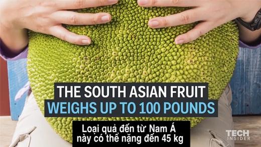 Đây chính là loại trái cây có khả năng cứu cả thế giới