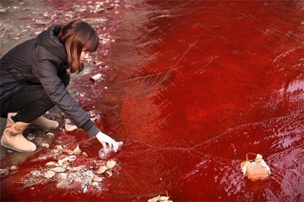 """""""Dòng sông máu"""" kinh khiếp này cũng không khiến con người nỗ lực cải thiện môi trường thiên nhiên nữa."""