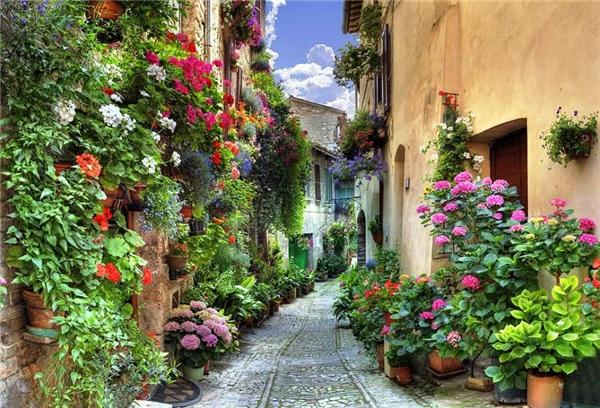 Nhìn từ xa, thị trấn trung cổ tại Spello như một bức tranh điểm xuyết bằng những chậu hoa xinh xinh hai bên đường. Hằng năm, thị trấn nhỏ lại thu hút hàng triệu lượt khách đến tham quan và thưởng ngoạn vẻ đẹp nơi đây.