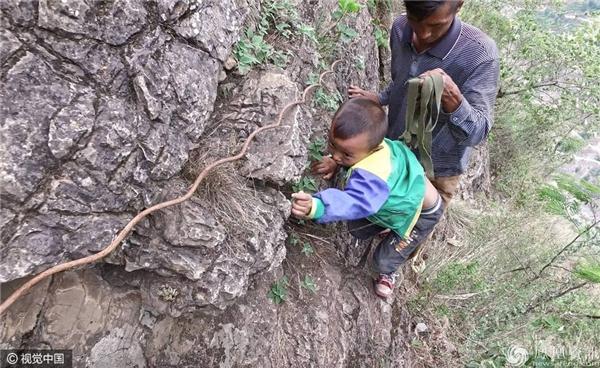 Có những em chỉ mới 6 tuổi cũng đã phải vượt hành trình cheo leo này để đến trường. (Ảnh: news-ifeng.com)