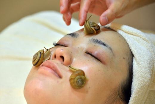 Ốc sên tiết ra chất có tác dụng chống oxy hóa.