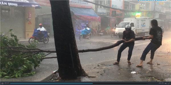 Một người khác hỗ trợ anh kéo nhánh cây vào sát trong lề. (Ảnh cắt từ clip)