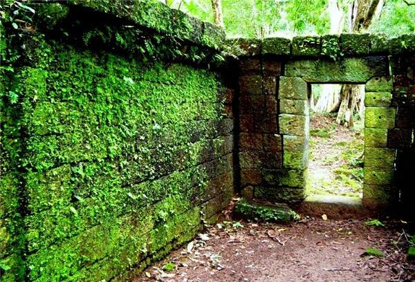 Nhà rêu phong, vách tường đổ nát là điềm báo gia đạo hồi suy,sầu thảm