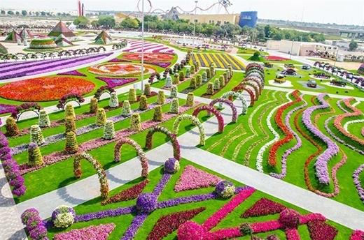 Vườn hoa đủ màu lòa loẹt và phô trương thế nàychắc chỉ có ở Dubai. (Ảnh: Internet)