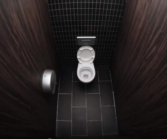 Tất nhiên mục đích chính khi vào nhà vệ sinh vẫn là đi giải quyết nỗi buồn.