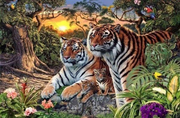 Có bao nhiêu con hổ trong bức ảnh? Đảm bảo bạn sẽ trả lời sai.