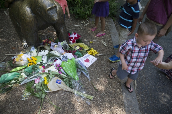 Nhiều người đến bức tượng tưởng niệm chú khỉ đột Harambe để bày tỏ lòng thương tiếc. (Ảnh: AP)