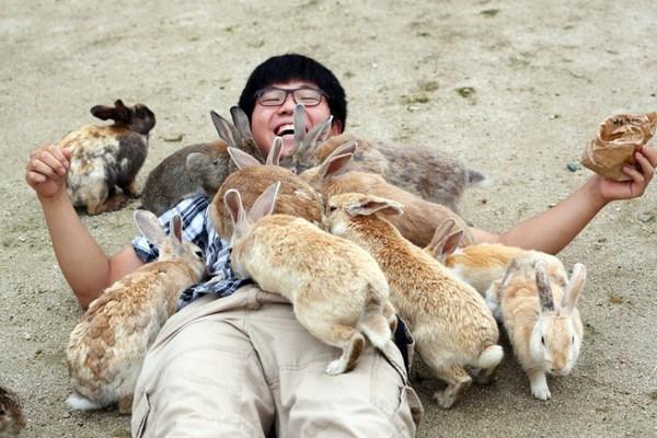 """Du lịch thế giới - Những vương quốc động vật chắc chắn sẽ khiến bạn """"sửng sốt"""" khi ghé thăm"""
