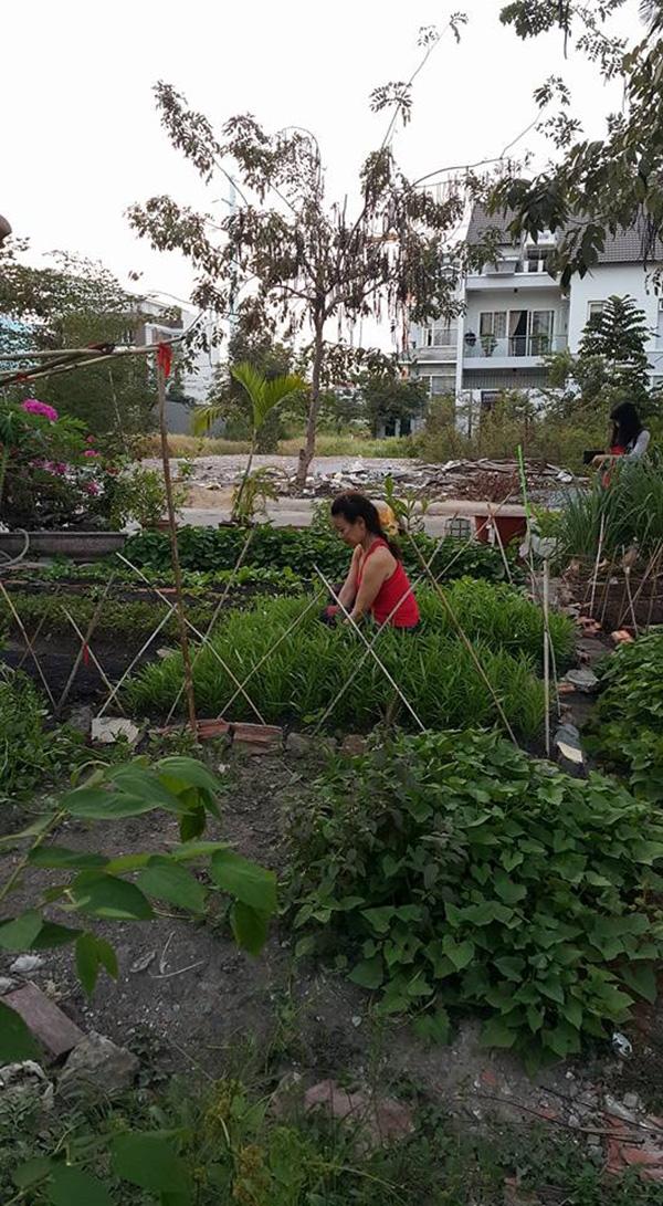 Cuộc sống bên trong căn biệt thự tiền tỉ của gia đình Hà Hồ - Tin sao Viet - Tin tuc sao Viet - Scandal sao Viet - Tin tuc cua Sao - Tin cua Sao
