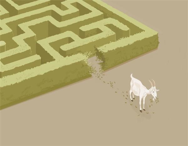 Con người thường giải quyết vấn đề dựa vào bản năng mà bỏ qua tính logic.