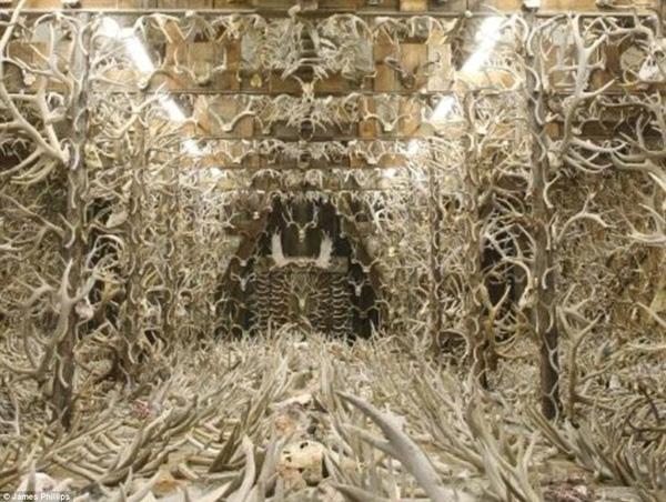 Bên trong căn nhà sừng, nơi chứa 15000 chiếc sừng, gạc hươu nai được phát hiện trong 60 năm qua.