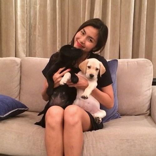 Tăng Thanh Hà cũng là một trong những ngôi sao nổi tiếng yêu thú cưng của làng giải trí. Cô nuôi hai chú chó thuộc giống Lab - một giống chó săn phổ biến ở Mĩ, rất đáng yêu và dễ huấn luyện. - Tin sao Viet - Tin tuc sao Viet - Scandal sao Viet - Tin tuc cua Sao - Tin cua Sao