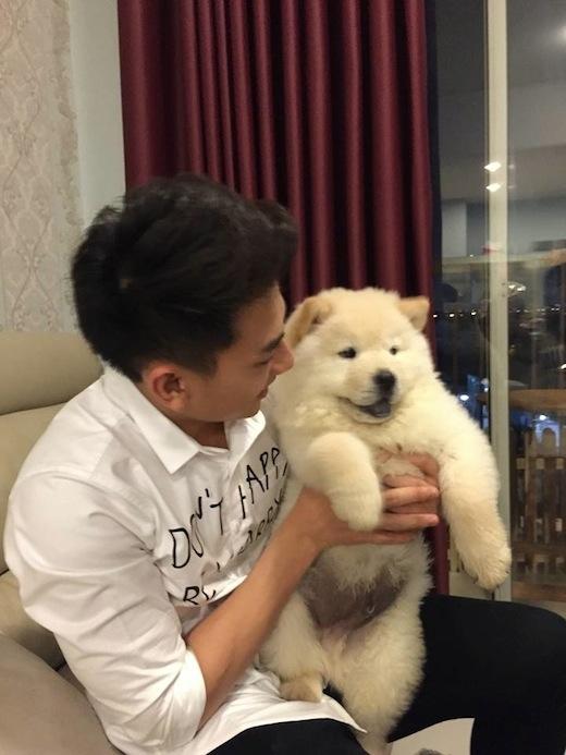 Isaac nuôi một em Chow Chow trắng muốt rất đáng yêu. - Tin sao Viet - Tin tuc sao Viet - Scandal sao Viet - Tin tuc cua Sao - Tin cua Sao