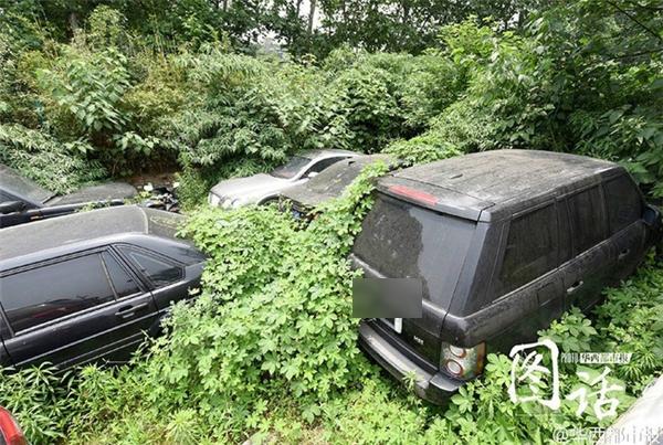 Bãi xe hoang chứa nhiều xe sang hiện đang thu hút sự chú ý của dư luận Trung Quốc.