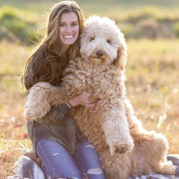 Câu hỏi: hãy tìm con chó trong bức ảnh. Trả lời: không có con chó nào cả.