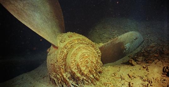 Một chân vịt dưới đáy đại dương.