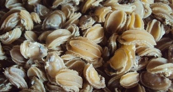 Bào ngư không còn là món hiếm nữa, lại còn được sấy khô để dễ mang về. (Ảnh: Internet)