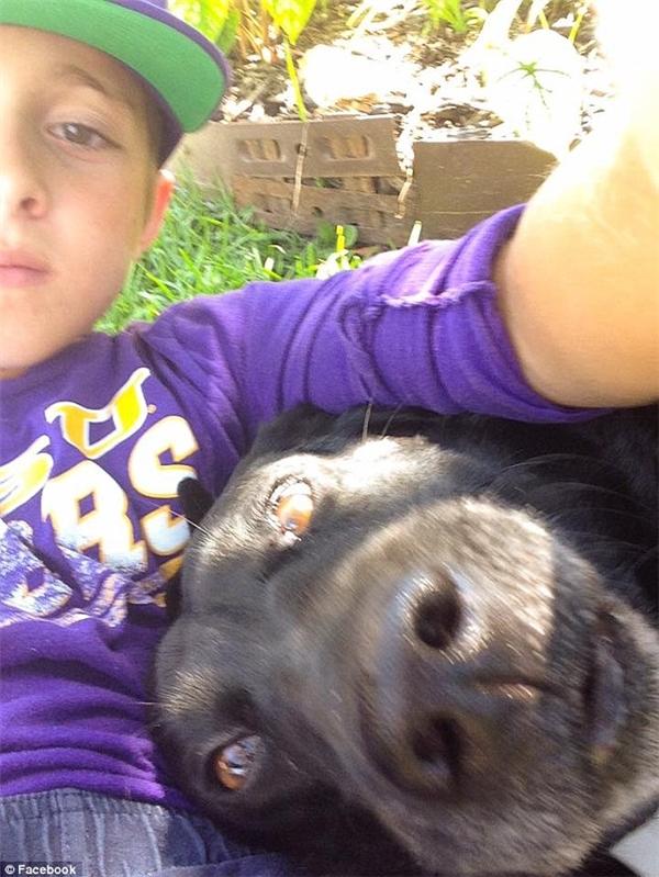 Xúc động với tình cảm của cậu bé và chú chó nhà hàng xóm