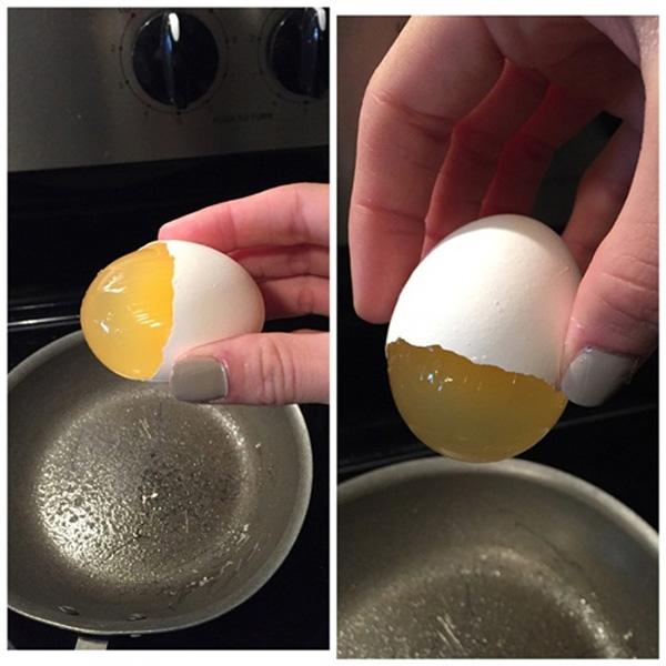 6. Trứng làm bằng chất gì mà kỳ lạ thế nhỉ?