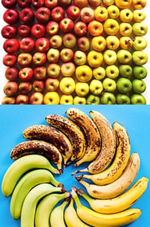 Với những ai ghét ăn trái cây thì hãy cho họ xem tấm hình này ngay và luôn. Đảm bảo không họ sẽthích mê cho mà xem. (Ảnh: Internet)