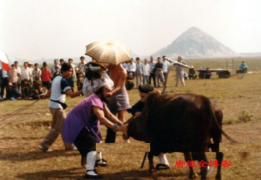 Mã Đức Hoa và Diêm Hoài Lễ (Sa Tăng) đã phải rất vất vả với chú bò trong cảnh quaynày.