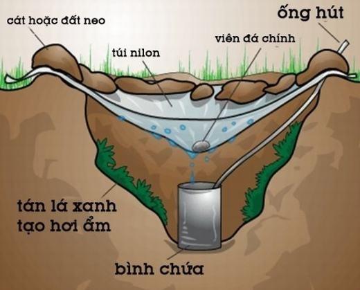 Bây giờ thì bạn không lo không có nước rồi đúng không nào. (Ảnh: Internet)