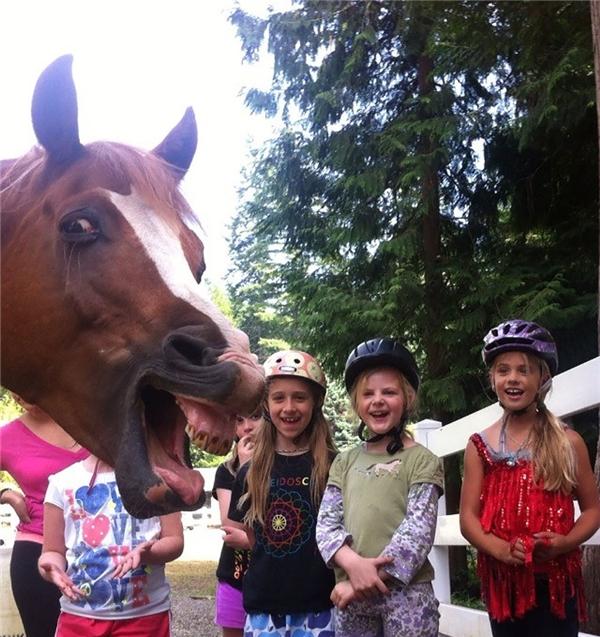 Chàng ngựa này có vẻ hơi bị hớn quá mức! (Ảnh: Tumblr)