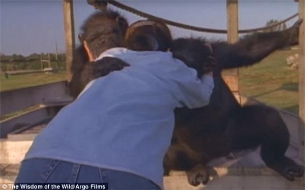 Rồi vòng tay ôm lấy Linda.