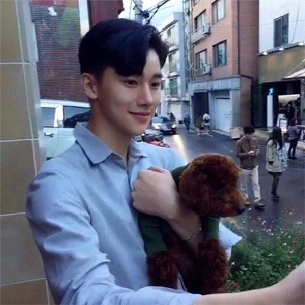 Anh đặc biệt thích chơi với những chú chó đáng yêu.