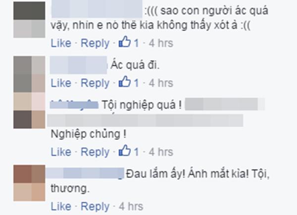 Rất nhiều bình luận lên án thú vui phi nhân tính liên tục được đăng tải.(Ảnh: Chụp FB)