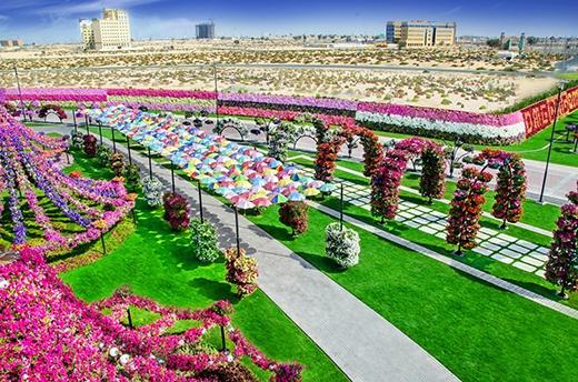 Dubai Miracle - xứ sở thần tiên ở sa mạc. (Ảnh: Internet)